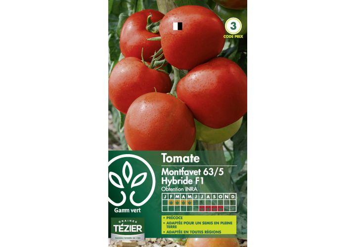 Gr. tomate montfavet 63/5 Gamm Vert