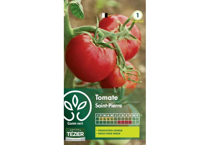 Gr. tomate st pierre Gamm Vert