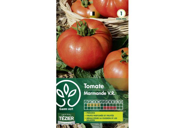 Gr. tomate marmande Gamm Vert