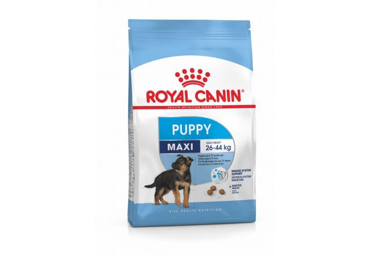 Croquette  maxi junior 15kg Royal Canin