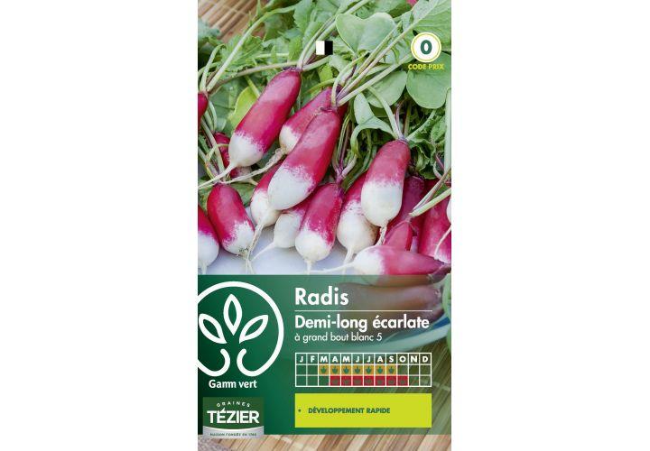 Gr. radis ecarlate 1/2 long Gamm Vert