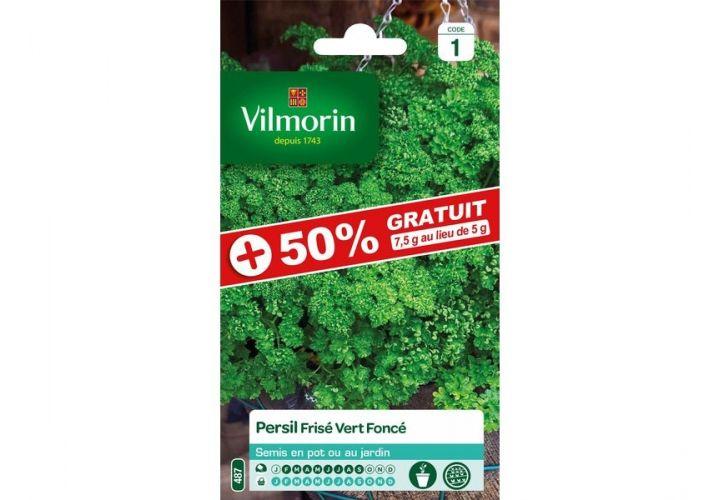 Gr. persil frisé vert foncé Vilmorin