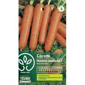 Gr. carotte nantaise tam-tam Gamm Vert