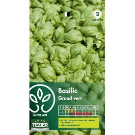 Gr. basilic Grand vert Gamm Vert